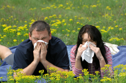 Relief of Hayfever & Allergic Rhinitis Using Homeopathy for Relief