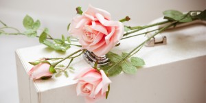 Valentines Day - Homeopathy for Matters of the Heart