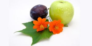 5 ways to lose weight naturally homeopathy