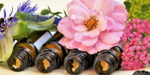 Beginners guide to Homeopathy Eileen Scullion
